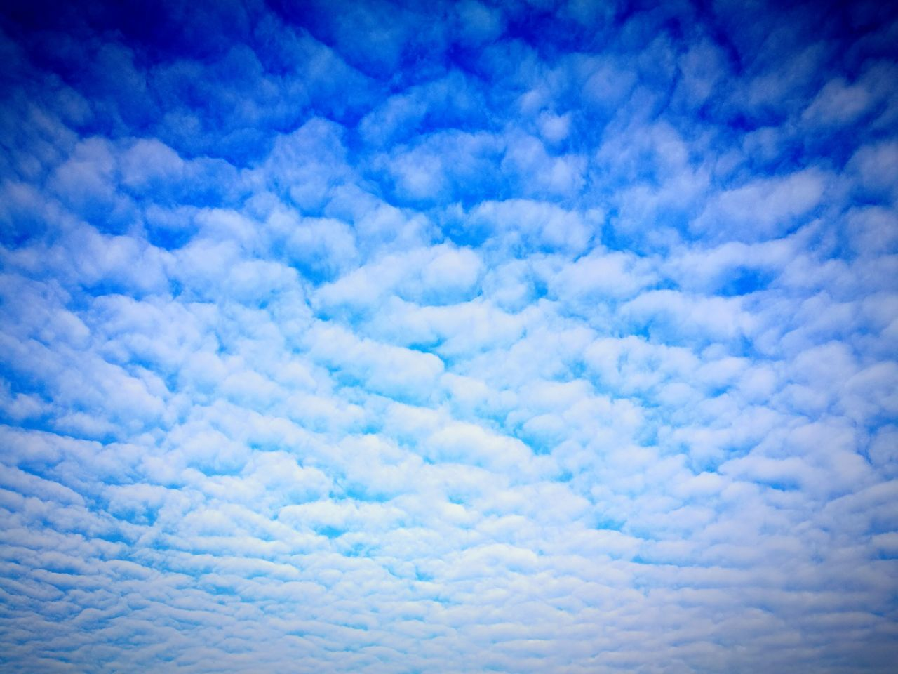 Experimenting with stronger retouches. Backgrounds Blue Sky Nature Cloud - Sky White Color Heaven Fluffy Abstract Cloudscape Cumulus Cloud Textured  Sky Only Beauty In Nature No People Scenics Day Outdoors Like Sand Like Snow Textured  Patterns In Nature Full Frame Beauty In Nature Cloudscape
