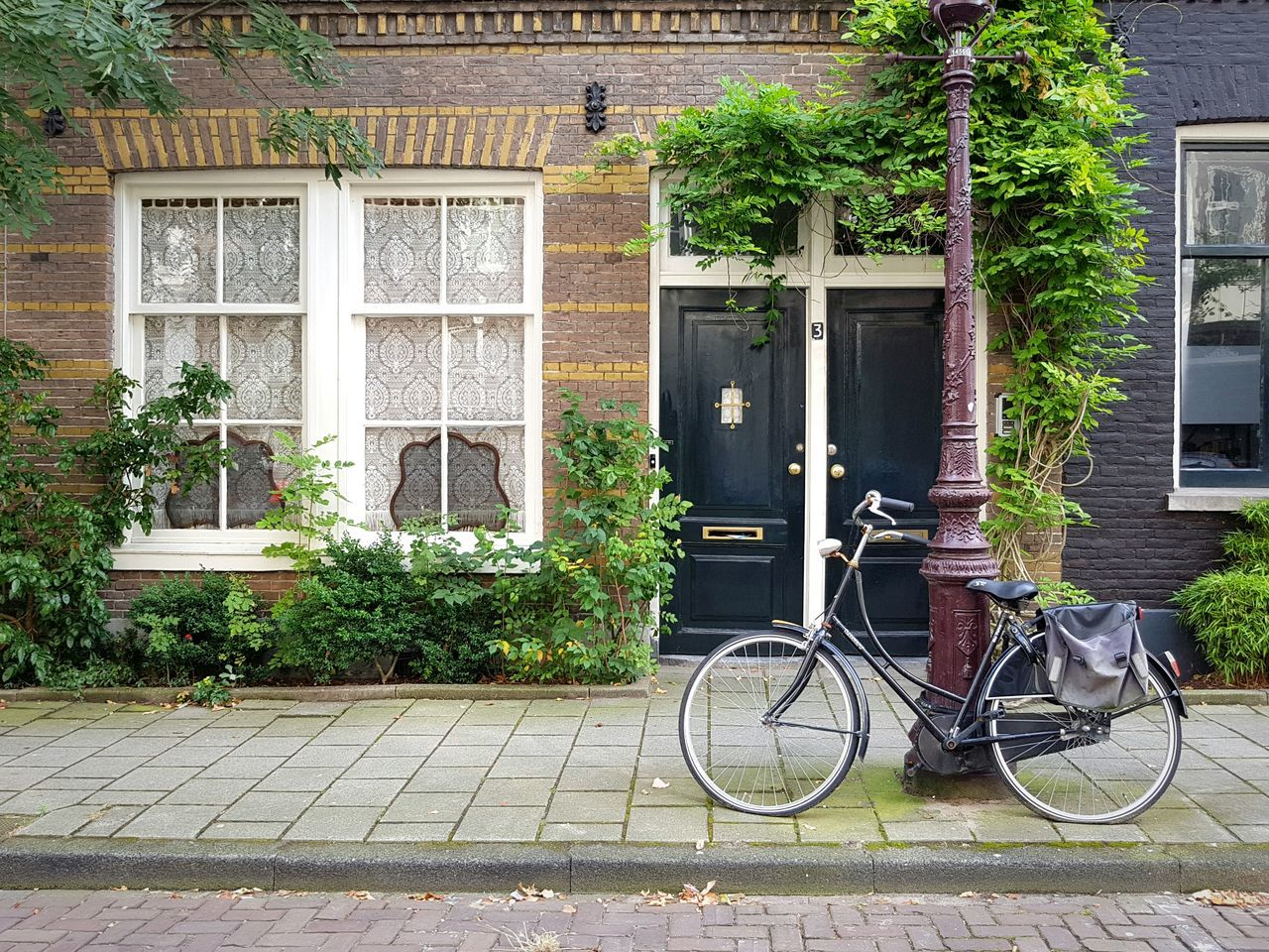 Window Bicycle Tree Building Exterior Transportation Mode Of Transport Architecture Built Structure Stationary No People Land Vehicle Outdoors Day House Green Color Ivy Houses And Windows Amsterdam Urban Geometry Traditional Typical EyeEm Best Shots Traveling Parallel CyclingUnites