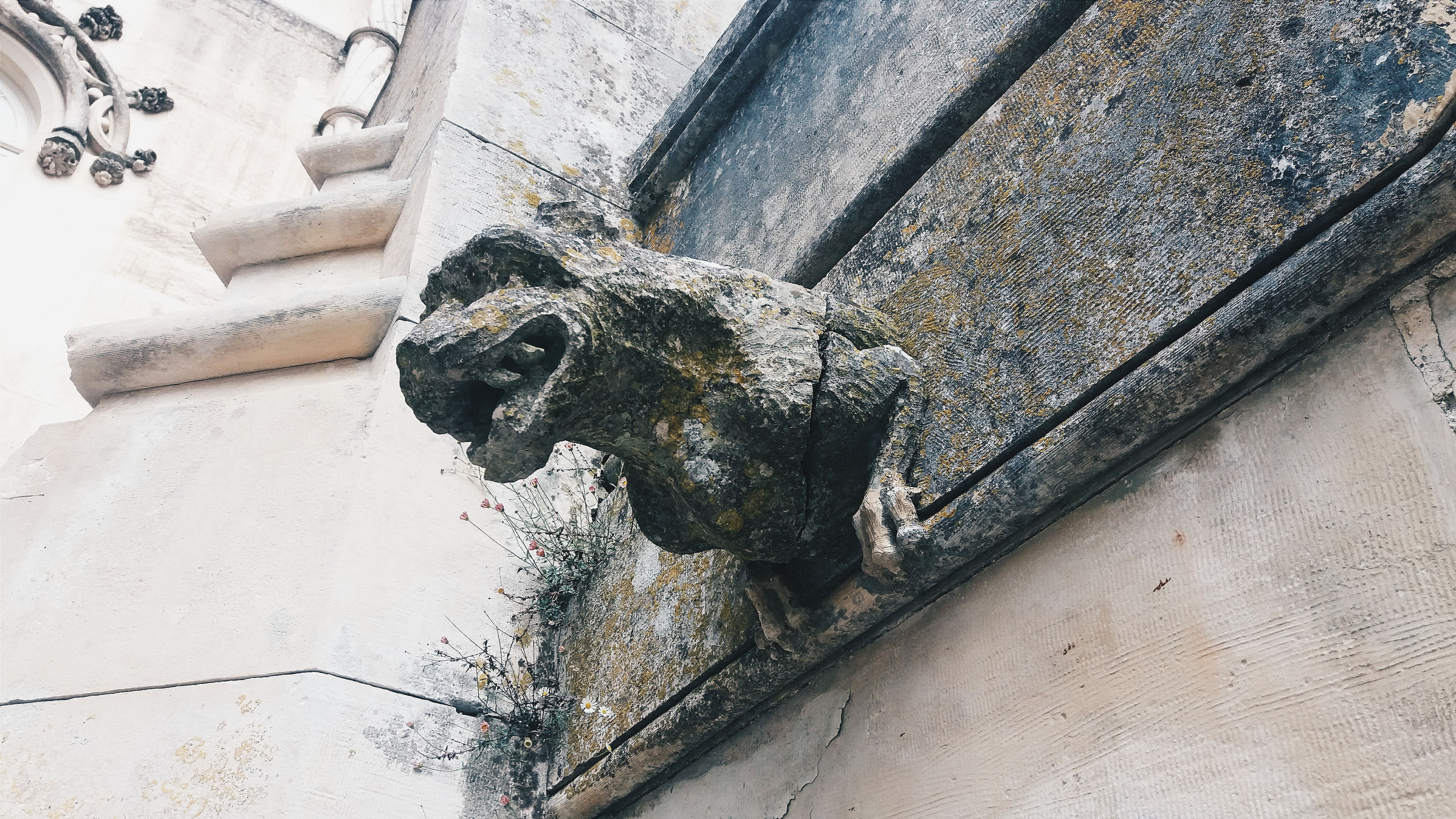 old, gargoyle, no people, day, outdoors, high angle view, sculpture, history, close-up, architecture, animal themes
