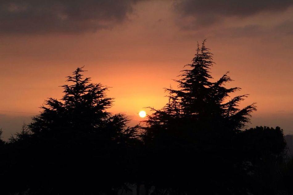 Sunset Taking Photos Night Relaxing