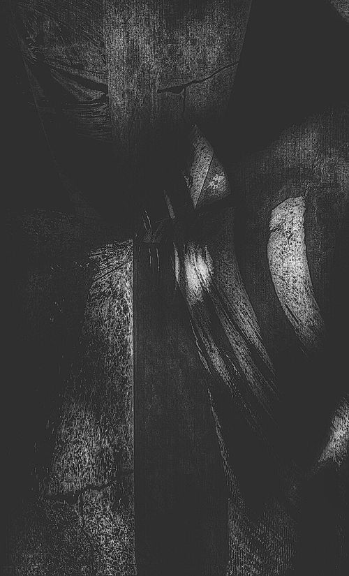 Bwn_friday_eyeemchallenge Abstract Abstract Photography Blackandwhite