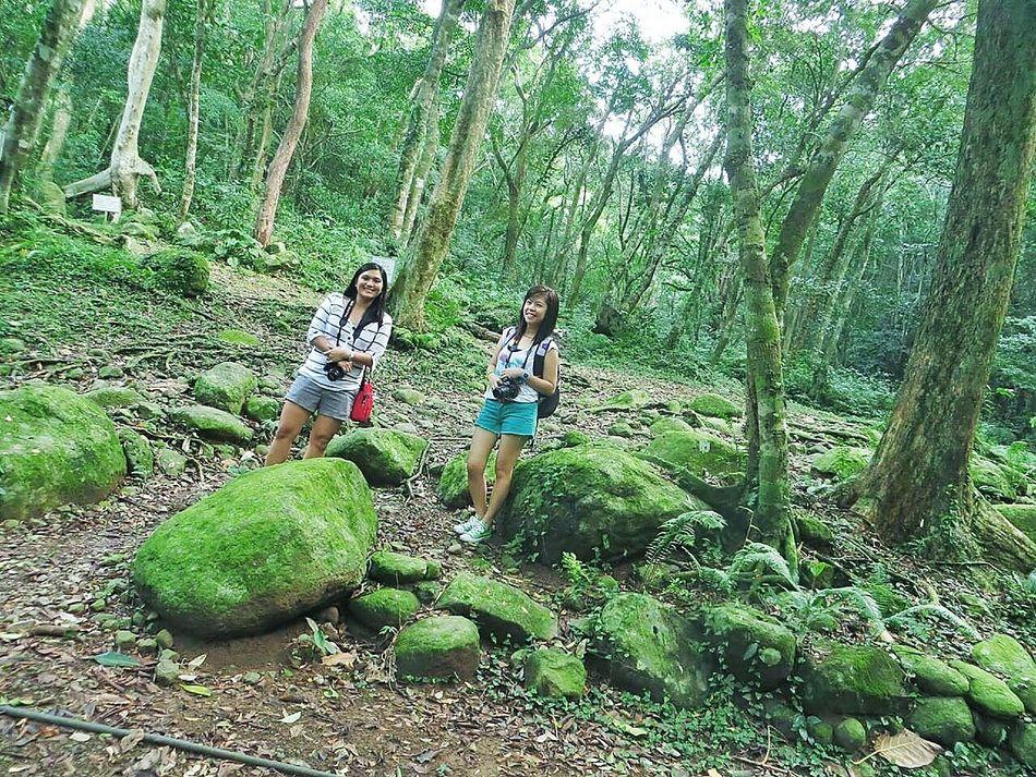 Evergreen. Di21 Forest Getaway  Infinité