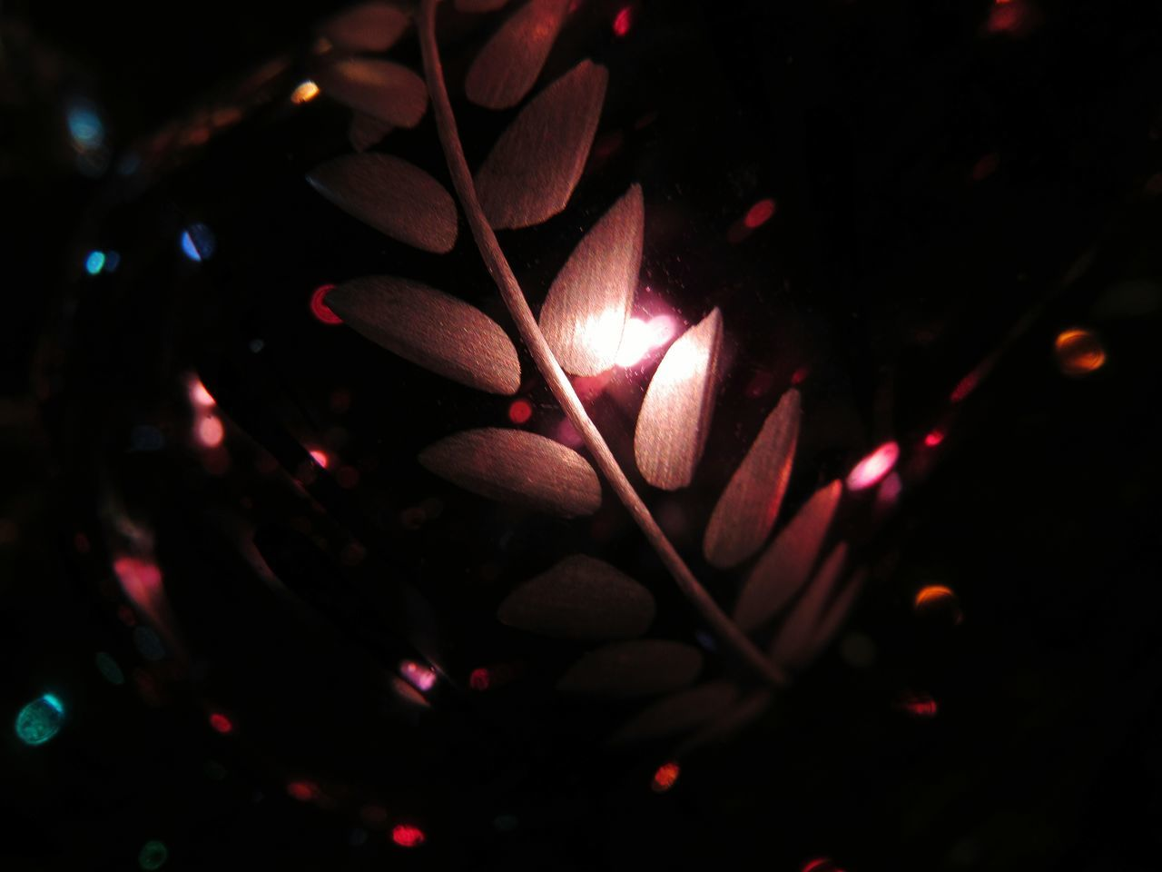 Christmastime Christmas Tree Christmas Lights Christmas Decorations Christmas Time Lights Warmth Glow Etched Glass A Touch Of Colour Wintertime EyeEm Gallery Best Christmas Lights