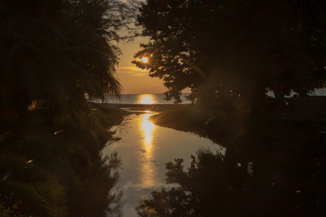 Abenstimmung Beauty In Nature Idyllic Malaysia Nature No People Outdoors Reflection Scenics Silhouette Sonnenuntergang Sunset Tioman Tioman Island Tranquil Scene Tranquility Tree Water Waterfront