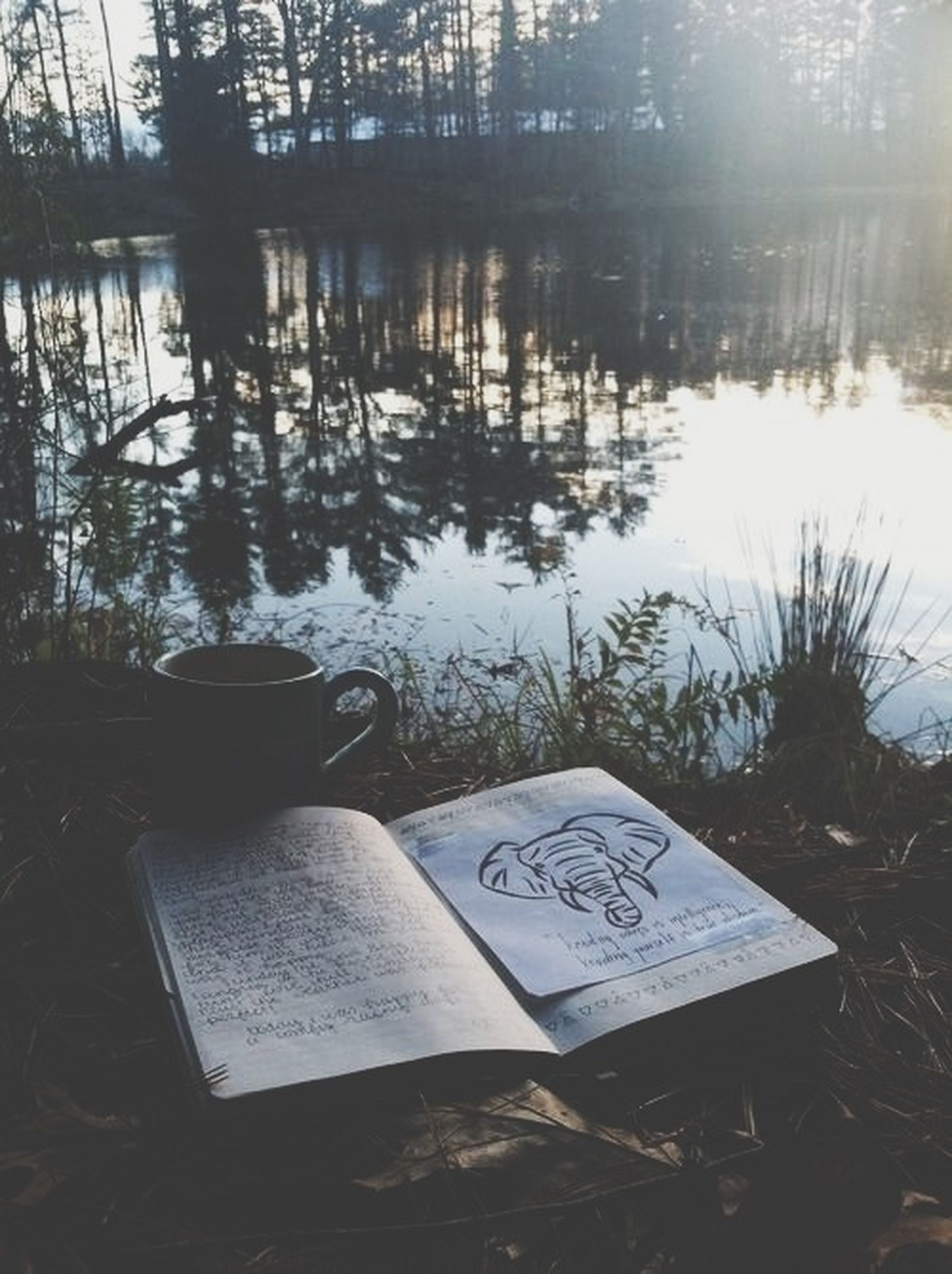 water, lake, tranquility, table, tree, tranquil scene, reflection, absence, nature, text, chair, sunlight, no people, day, lakeshore, empty, outdoors, western script, scenics, beauty in nature
