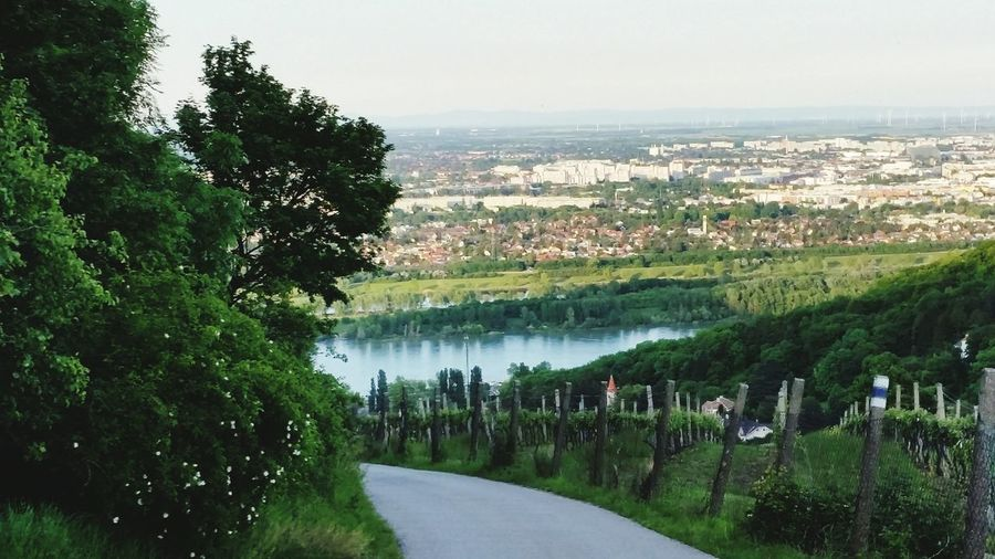 near Vienna..so amazing view in the vineyards Original Experiences Flowing Water Landscape Outdoors Beauty In Nature Relaxing No People Idyllic Non-urban Scene Tranquil Scene Tranquility Nature Flowing Water Travel Destinations Sunny Vineyards  Vineyard View Vineyard Location Vineyard In May