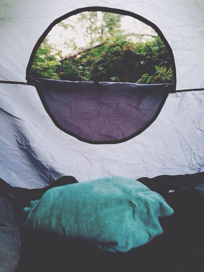 Camping Trip! Green Day Such A Great View! Tuna Tent ⛺ 3 A.m