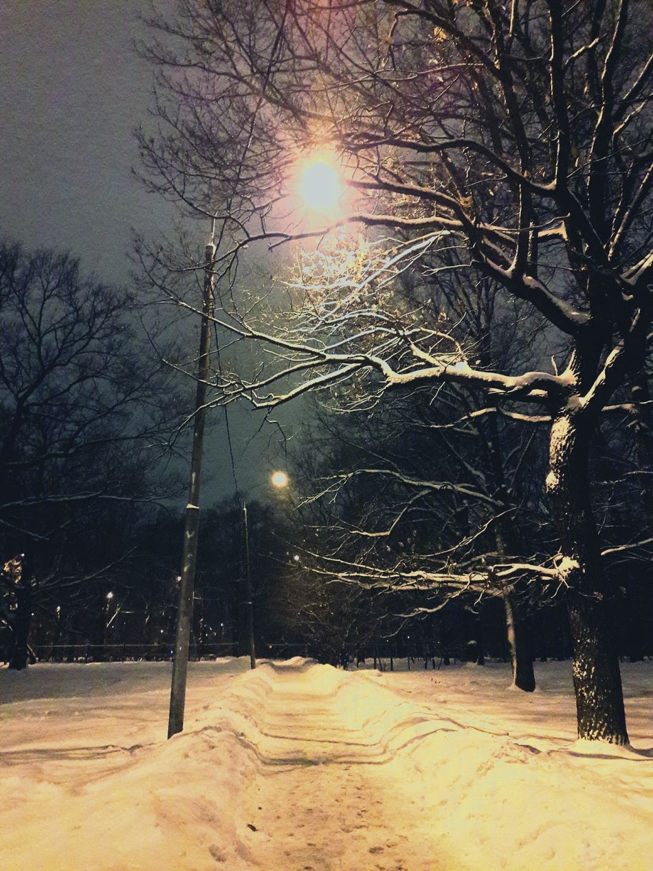 зима зима❄️ Nature Beauty In Nature No People Cold Temperature Москва Russia мойгород Nature Night Enjoy The New Normal Beauty In Nature