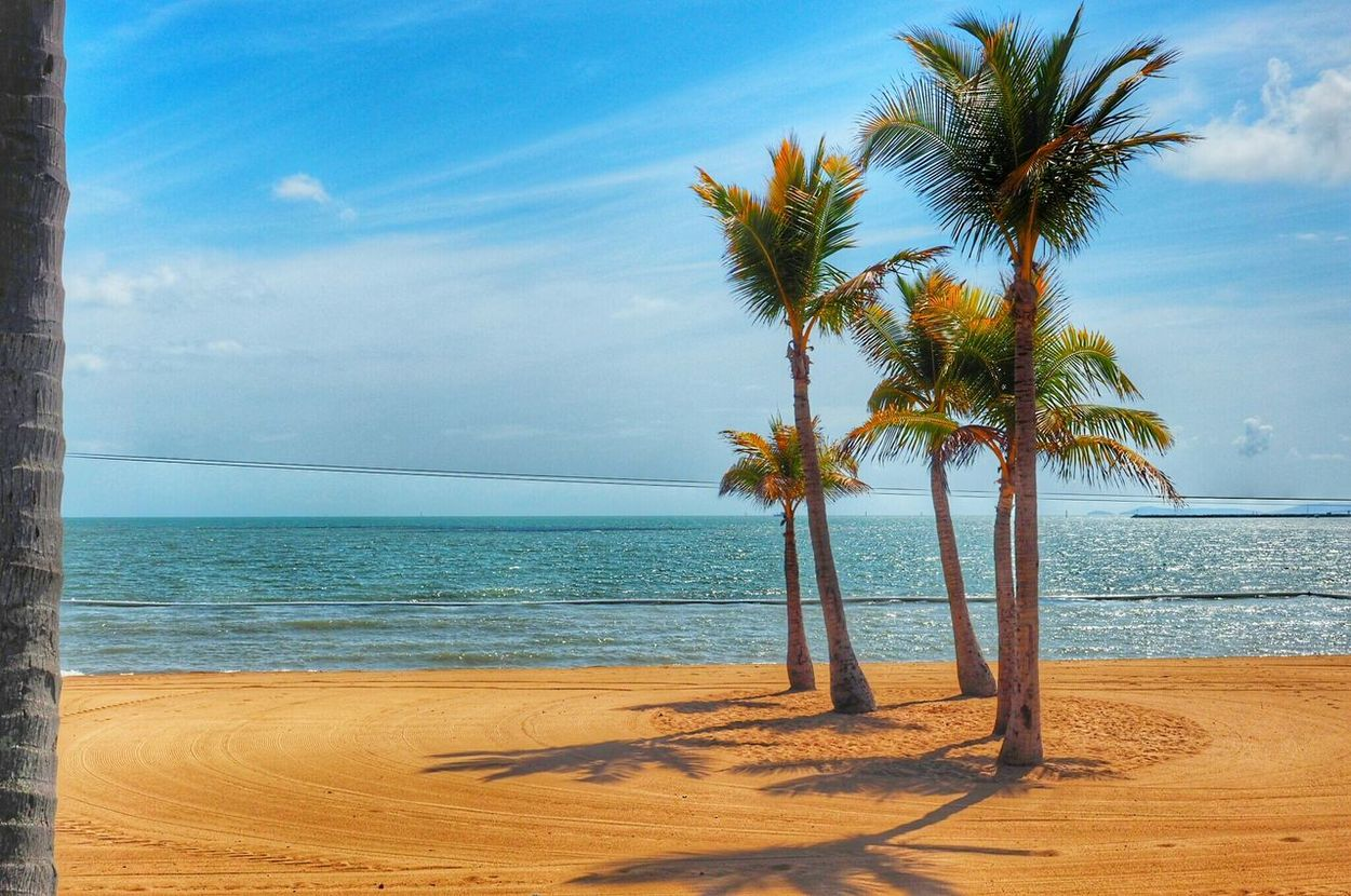 Palm Trees Ocean Beach Beachphotography Life Is A Beach Clouds Sky And Clouds Sky_collection Australia Townsville, Queensland. Ocean View Nature On Your Doorstep Townsville Oceanside Water No People
