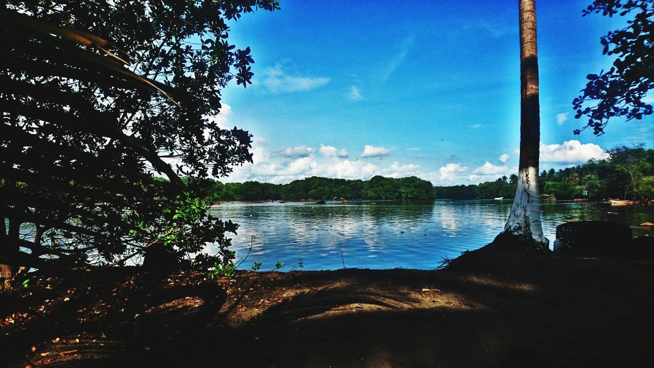 tree, sky, no people, nature, day, water, beauty in nature, lake, outdoors, scenics, architecture