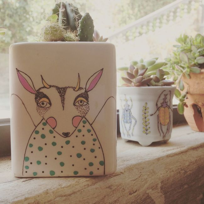 Cutest Flowerpots Flowerpot Cactus Bug Graphic Design Magic Magical Cafe Miel San Jose Costa Rica