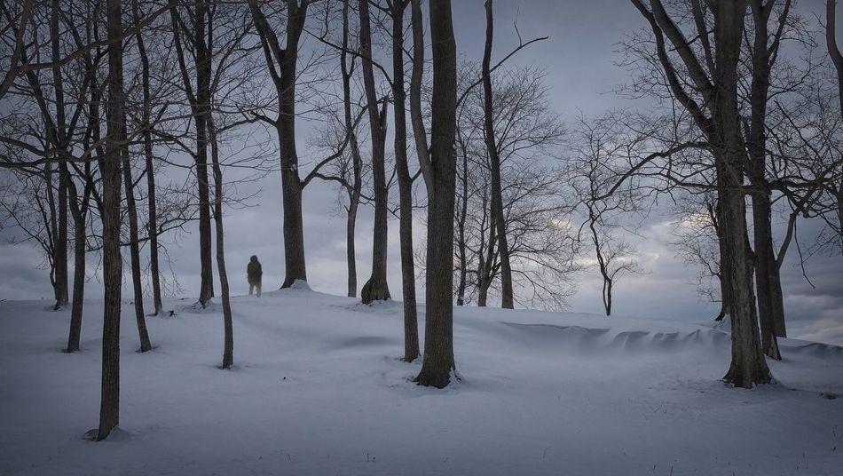 The Vanishing Of Ethan Carter Snow ❄ Snow Storm 2016 The Vanishing