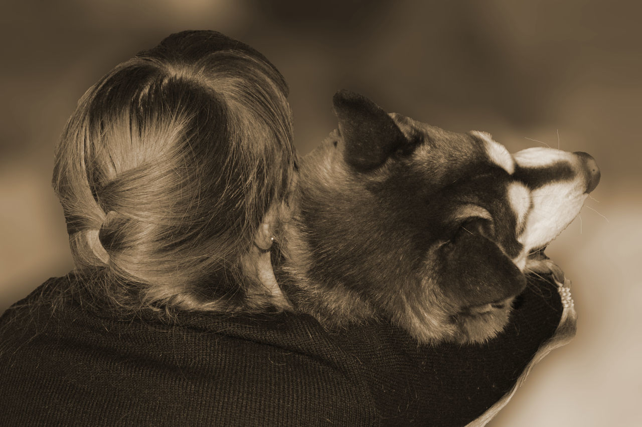 Animal Themes Close-up Dog Friendship From The Back Human And Animal Life Husky No Color Sepia Sepia Photography Woman Woman And Dog Women Blur