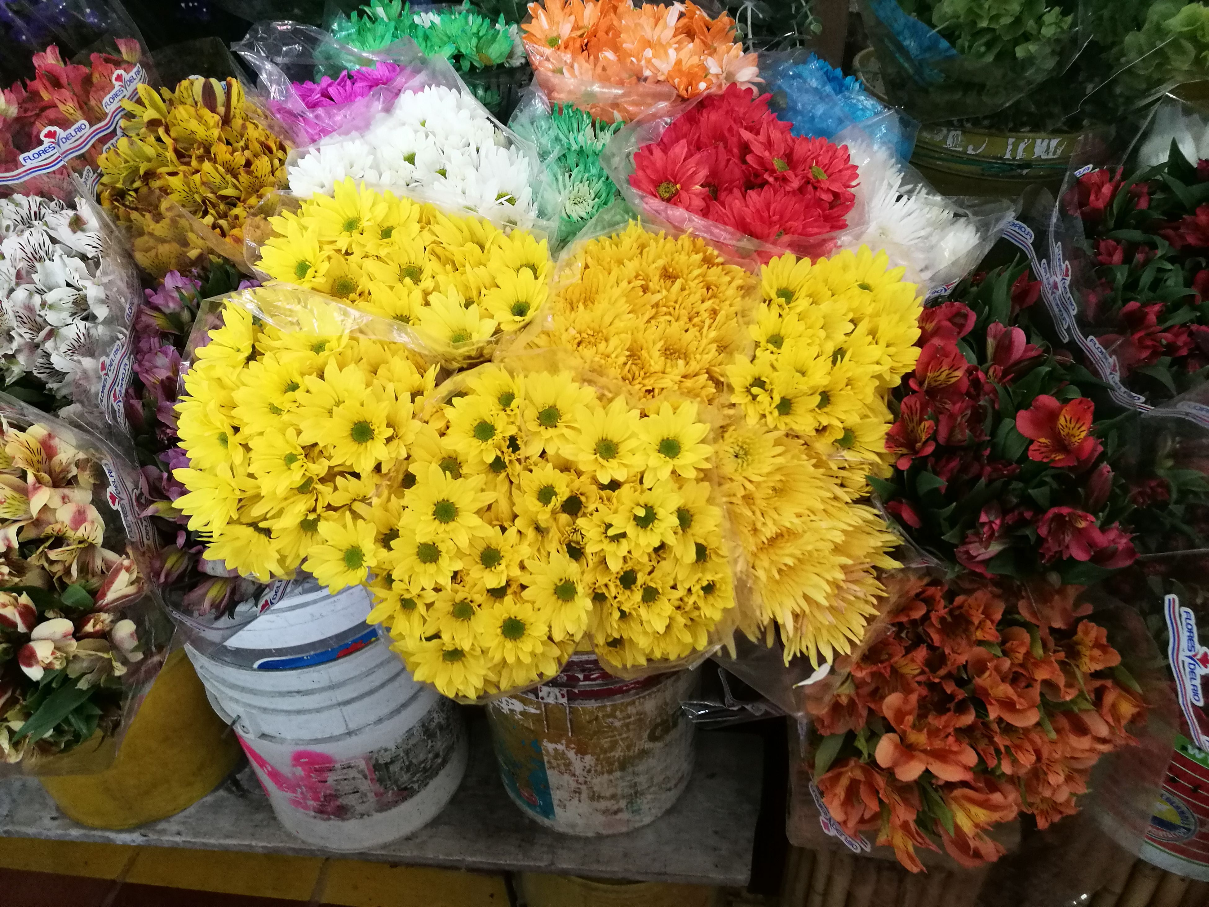 flower, fragility, multi colored, freshness, yellow, high angle view, marigold, flower head, beauty in nature, for sale, flower market, petal, no people, variation, nature, market, day, floral garland, outdoors, close-up