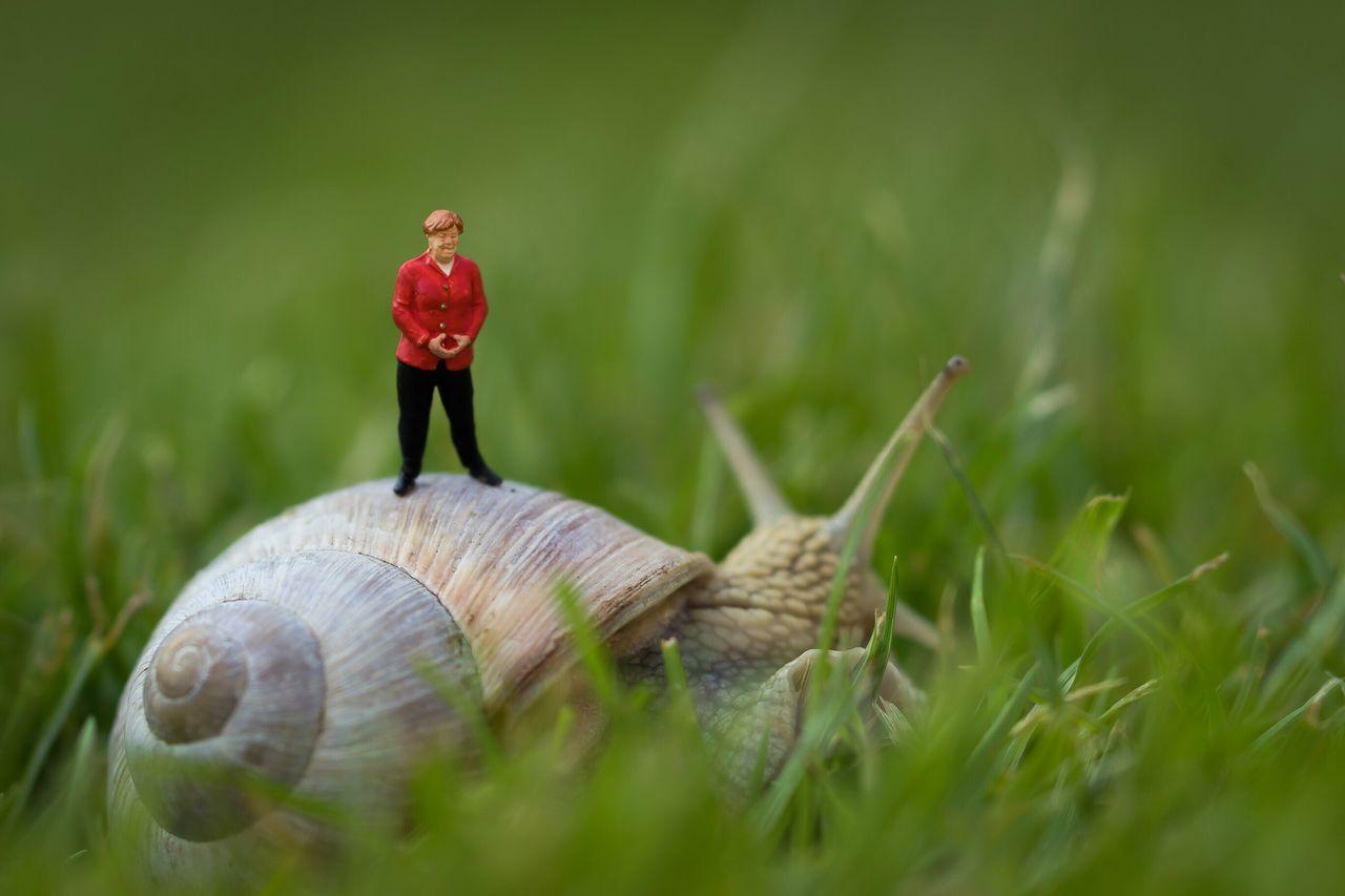 """Wir schaffen das"" ... Schritt für Schritt 🐌😊 Miniature Miniatur Merkel Angela Merkel Wir Schaffen Das Fun Snake Weinbergschnecke Garden"