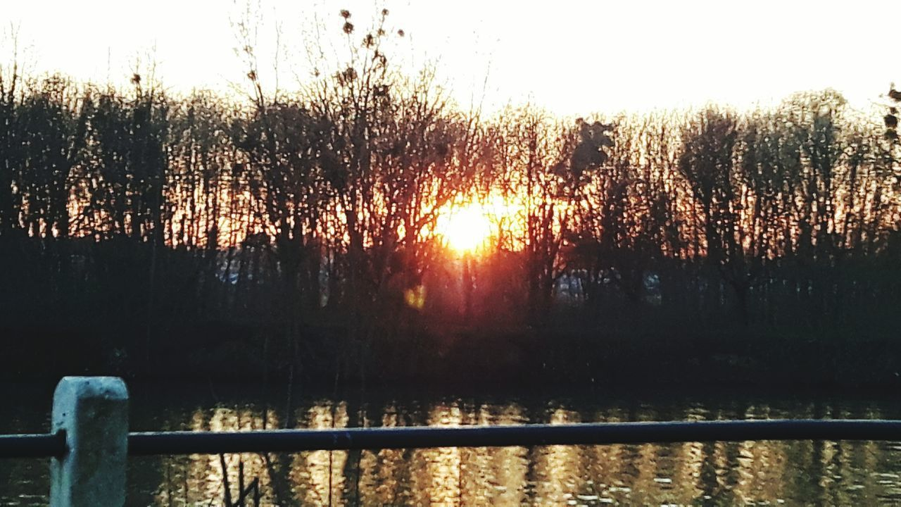 Sunset Sunset_collection Sun Through Trees Sunlight Sunlight And Shadow Water Water Reflections River River View Riverside Beauty In Nature Nature Naturelovers Nature Photography EyeEm Gallery Eyemphotography Eye4photography  EyeEm Nature Lover