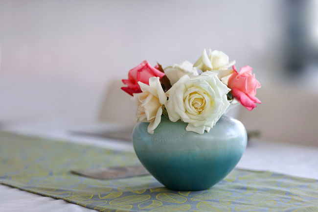 high resolution image available Beauty In Nature Blooming Bouquet Close-up Flower Flower Arrangement Flowers Growth Nature No People Petal Rosé Rose - Flower Roses Roses Are Red Roses Flowers  Roses🌹 Rose🌹 Selective Focus Softness Still Life Table Arrangement