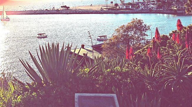 Corona Del Mar State Beach Corona Del Mar
