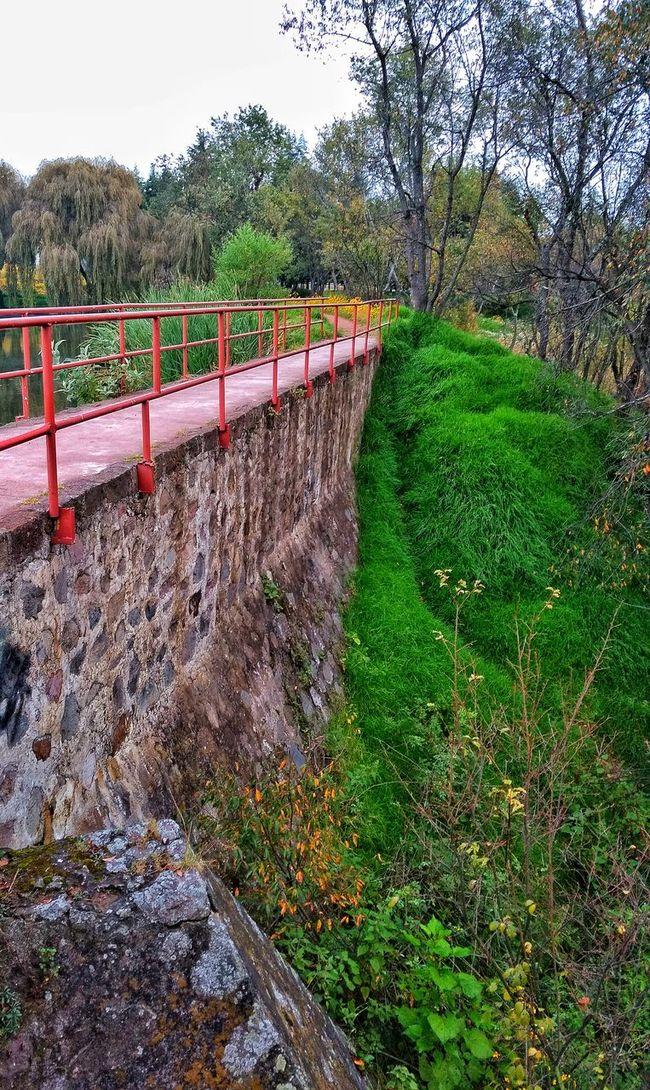 Bridge Bridge View Nature Photography Outdoors Day Landscape Landscape_Collection