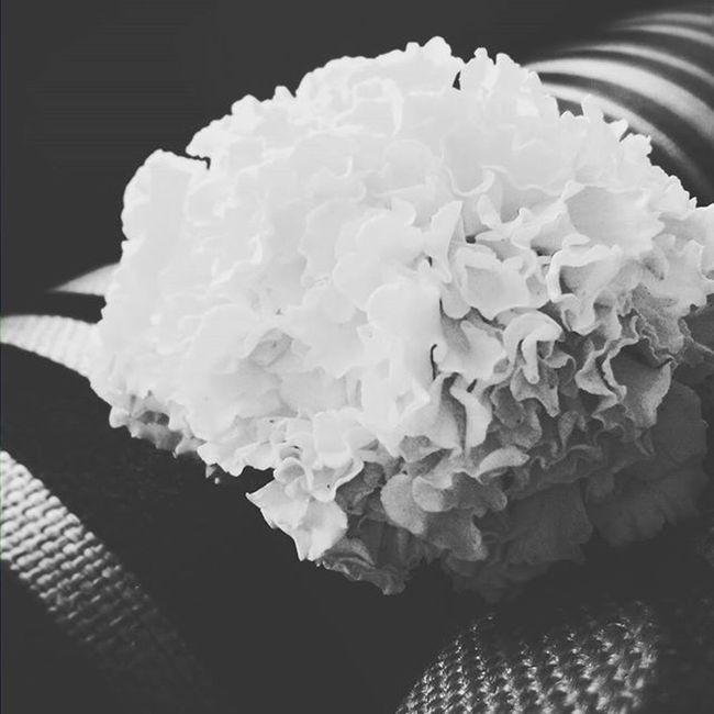 G E N D A P H O O L Genda Phool Flower Flowers Flowerporn Fortheloveofblackandwhite Monochromatic Monochrome Things2doinmumbai Mumbai_lifestyle MumbaiDiaries Diwali Diwali2015 2K15 India