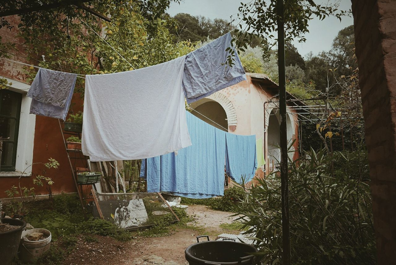 Sheets happen No People Tree Sunlight Day Outdoors Nature Hygiene Sheets Dry Washing Machine Colors Home