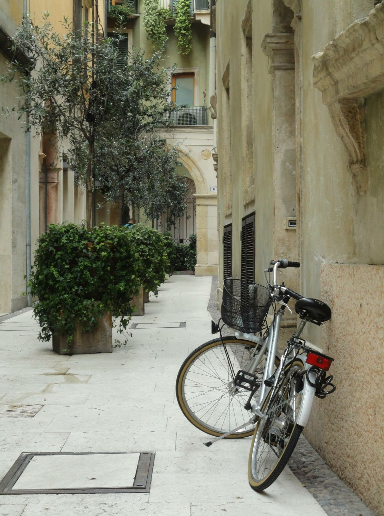 Architecture Leaves View Streetphotography Plants Bike Traveling Urban Geometry Looking To The Other Side Throw A Curve