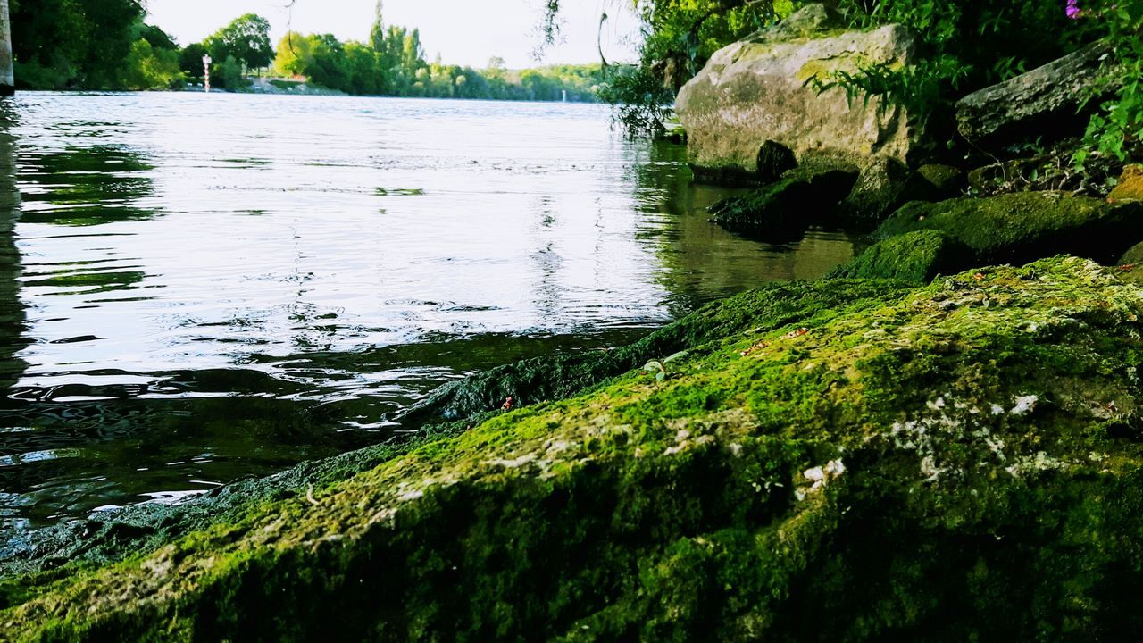 Along The River Water Reflections Stones And Rocks Green Color Quiet Place  Relaxing Moments Outdoors Walking Around Taking Pictures Beauty In Nature Eye4photography  Eyemphotography EyeEm Gallery