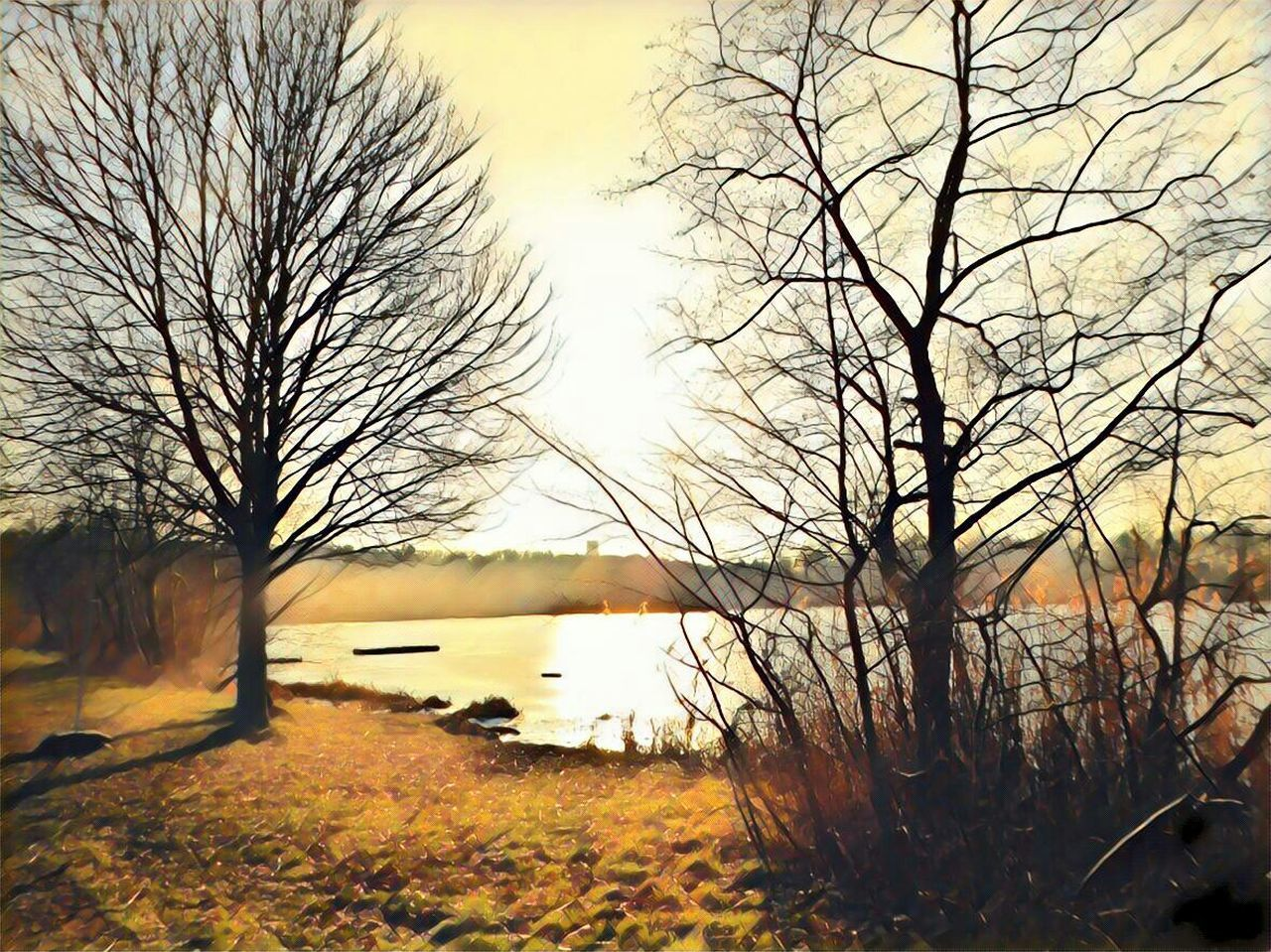 I Make My World The Way I Like It I'm A Edit-maniac😄😍 Playing With Effects Expression Artistique For My Friends 😍😘🎁 Tranquility Artistic Expression Shine Bright Like A Diamond! Landscape Sunset Beauty In Nature Tranquil Scene Tranquility Nature Bare Tree Lakesideview Brrrrrrrrr❄❄❄❄ Favorite Places Sunny Winter Day Nature Always Impressive..... Fragility Of Life Love The View..but Not The Temperature Surrounded By Nature Express Yourself ❤ Cold Outside,time For Creativity😎 Do What You Love Love What You Do