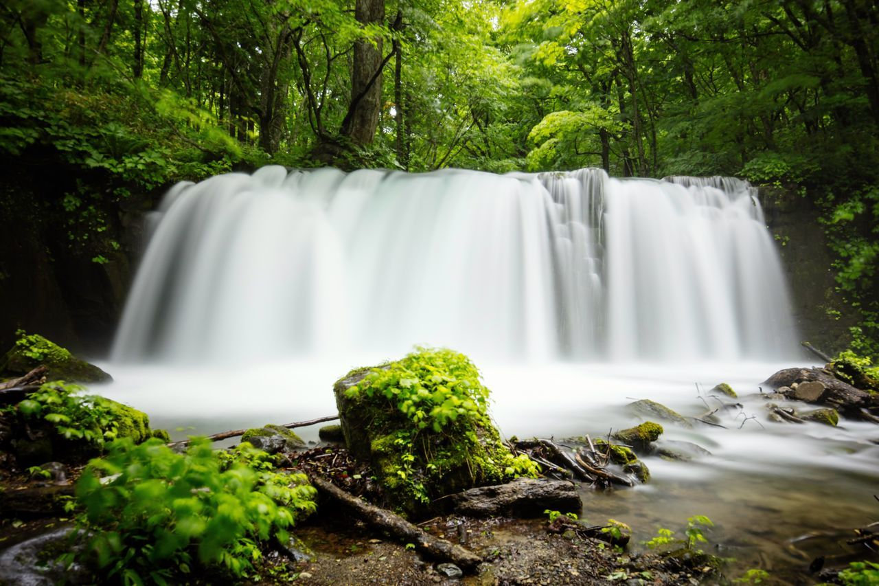 Fall Waterfall Stream Oirase Oirasekeiryu Forest Green Long Exposure Canon Canonphotography Canon5DSR EF16-35mmF4LIS USM Towada  Aomori Japan