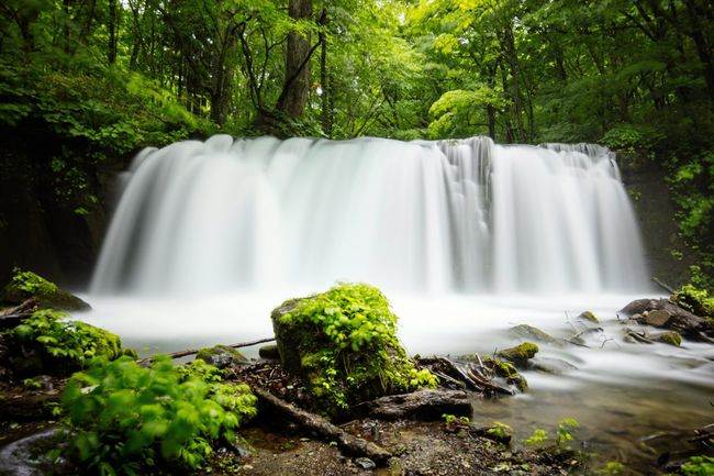 Fall Waterfall Stream Oirase Oirasekeiryu Forest Green Long Exposure Canon Canonphotography Canon5DSR EF16-35mmF4LIS USM Towada  Aomori Japan