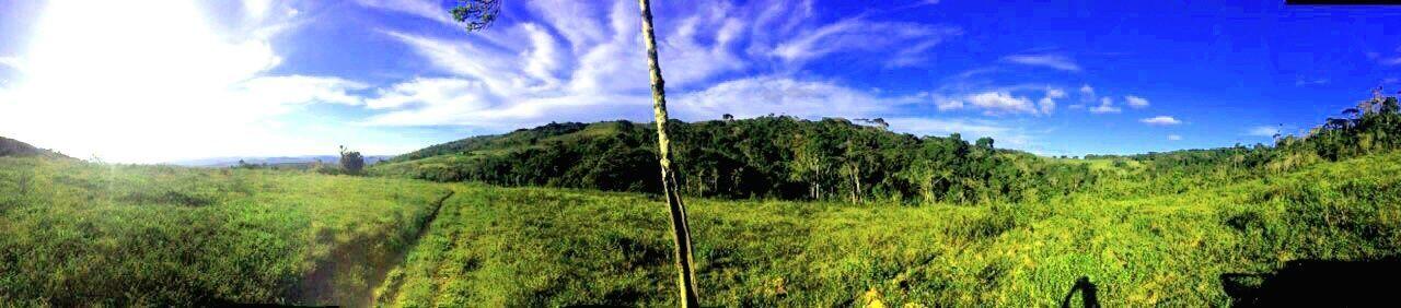 Brazil Fields Farm Fazenda Morro Jequie