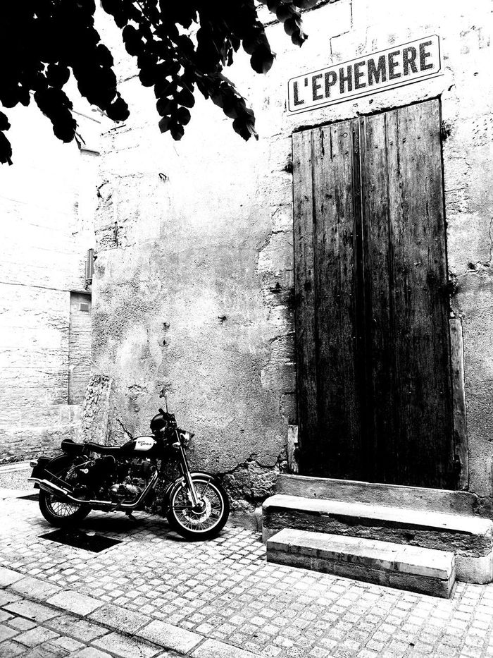 Day No People Outdoors Close-up Moto Périgueux éphémère Place Calm Cool Attitude Cool Day :) Tree Tranquility On The Road Again :) Calm Moment