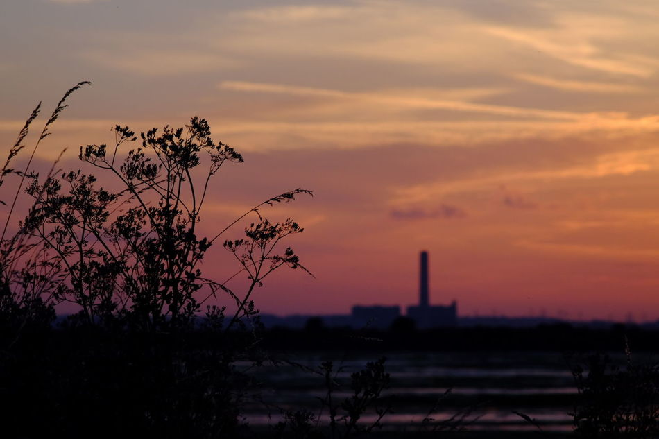 Architecture Beauty In Nature Built Structure Day Growth Horizontal Medway Estuary Medway River Nature No People Outdoors Plant Power Station Romantic Sky Silhouette Sky Sunset Tree Water