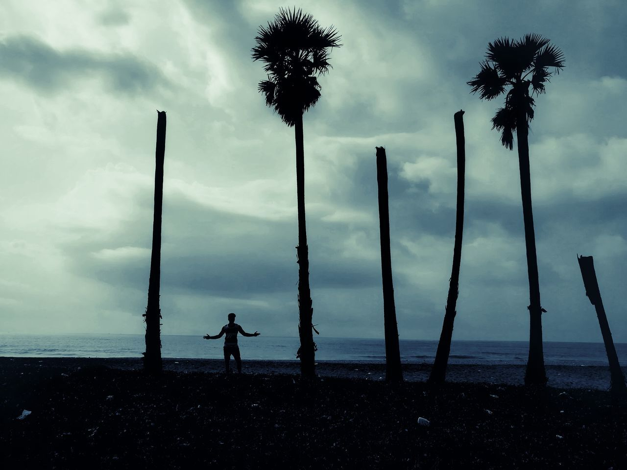 palm tree, tree, sky, one person, silhouette, sea, nature, beach, tree trunk, beauty in nature, cloud - sky, full length, leisure activity, outdoors, real people, lifestyles, scenics, men, day, standing, water, one man only, adult, people
