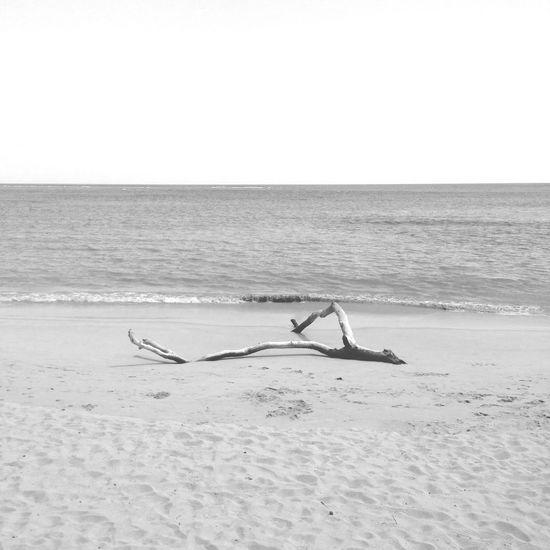White a moment White Calm Ocean