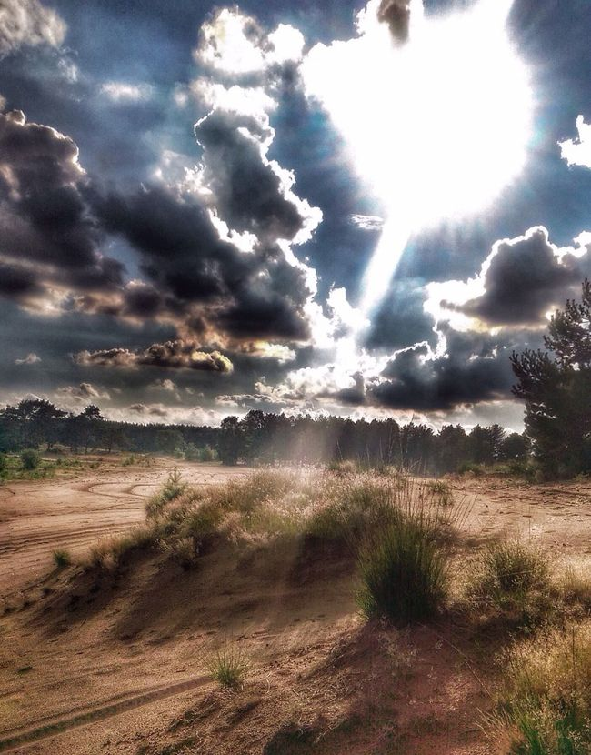 Landscape Sanddunes Nature Clouds And Sky Sunset #sun #clouds #skylovers #sky #nature #beautifulinnature #naturalbeauty #photography #landscape Limburg Budel/ Netherlands