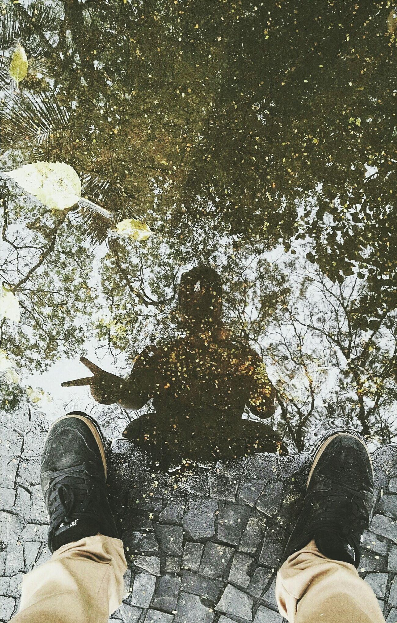 Say hi to the Water 💧 🌲   Photo: (instagram) @napa_oliveira Photo Playground Arte Sayhitothewater Taking Photos Park Photography First Eyeem Photo Followme