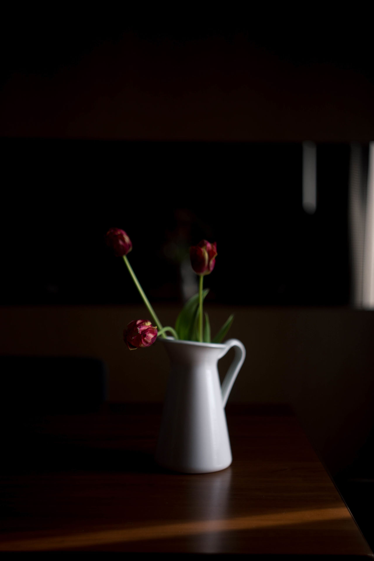 Black Background Blossom Close-up Day Detail Flower Flower Head Flowers Freshness Home Indoors  Interior Kinfolk Lifestyles Nature No People Table Tulips Vase
