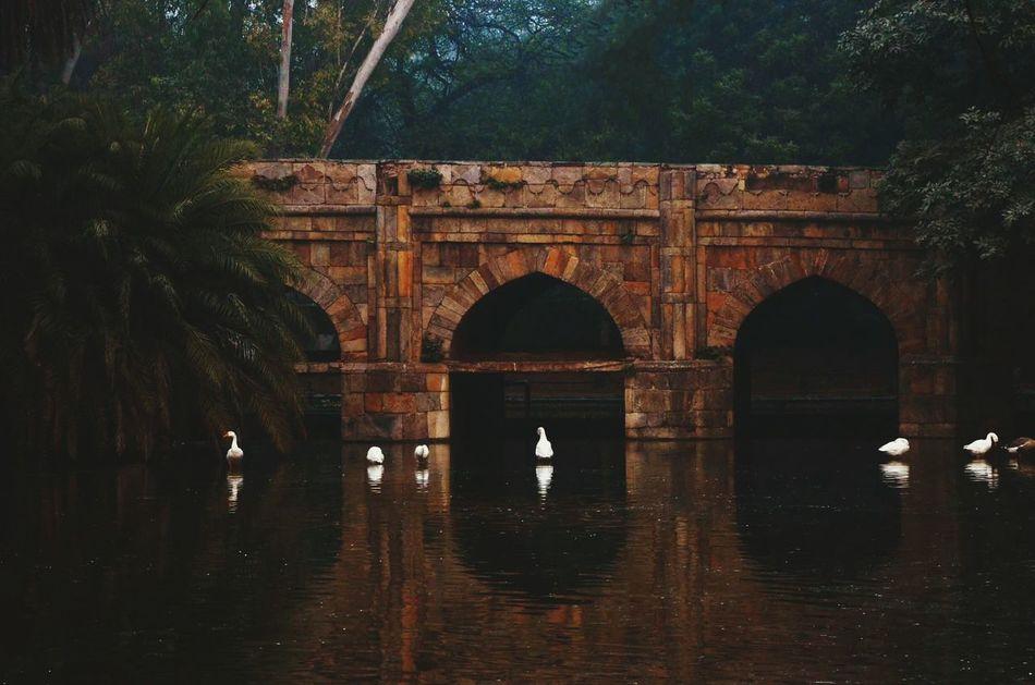 Hi! Hello World Taking Photos with Nikon D7000 Bridge LodhiGarden City New Delhi India Moghul Architecture Indian Moghul