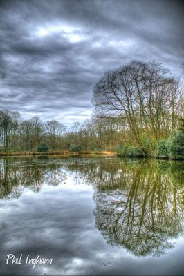 reflection_collection by Phil Ingham