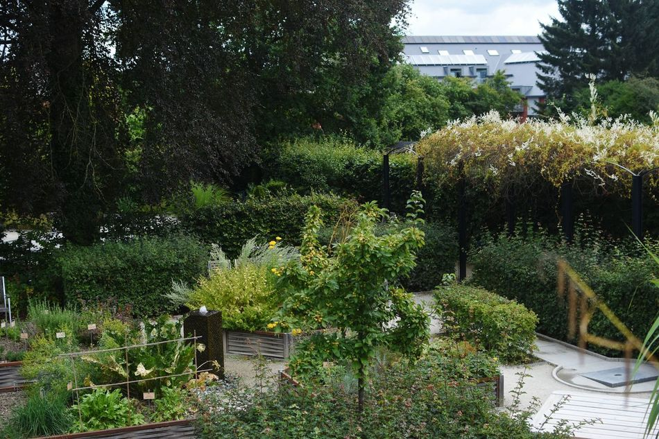 Belgium Nature Garden