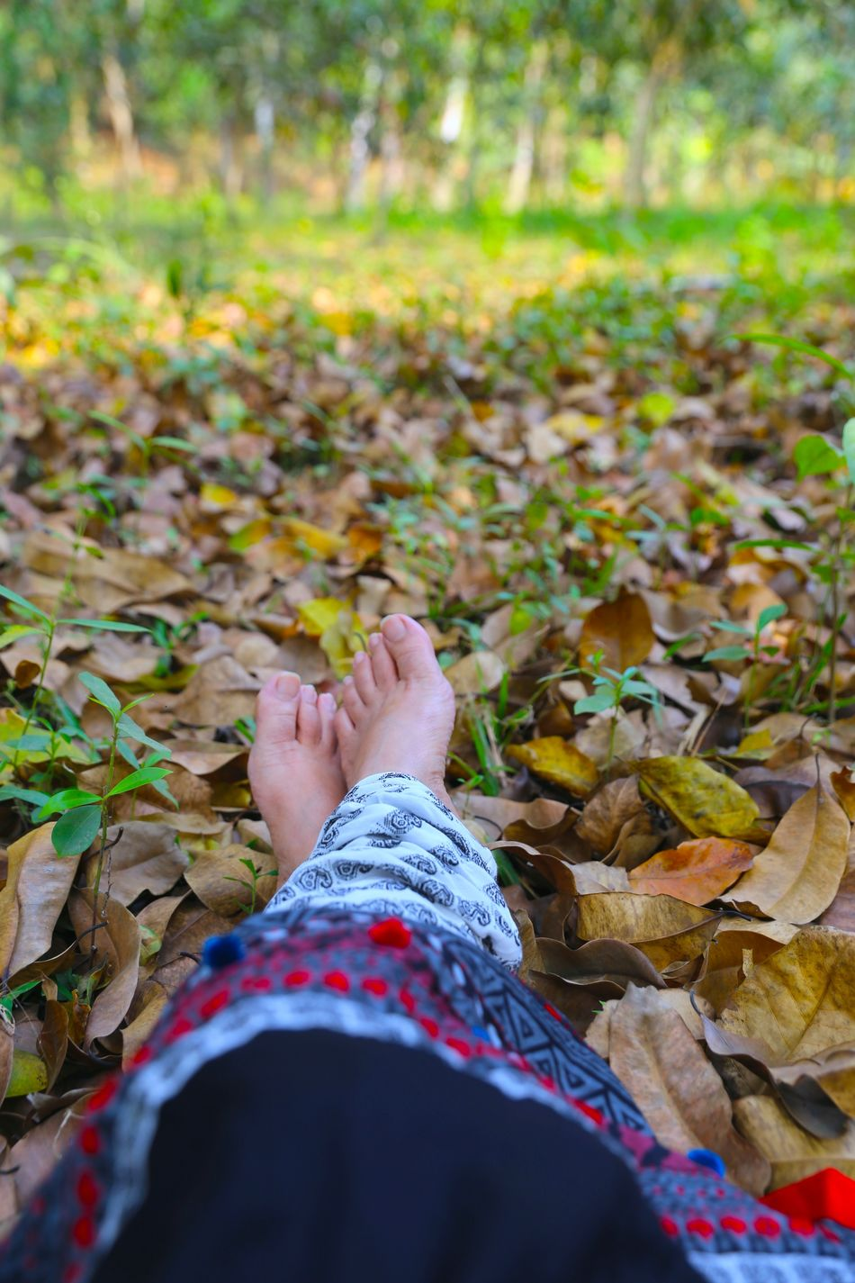 Adults Only Autumn Beauty In Nature Close-up Day Human Body Part Leaf Leisure Activity Lifestyles Low Section Nature Non Recognizable Female Non Recognizable People One Person One Woman Only Outdoors Personal Perspective Real People Women