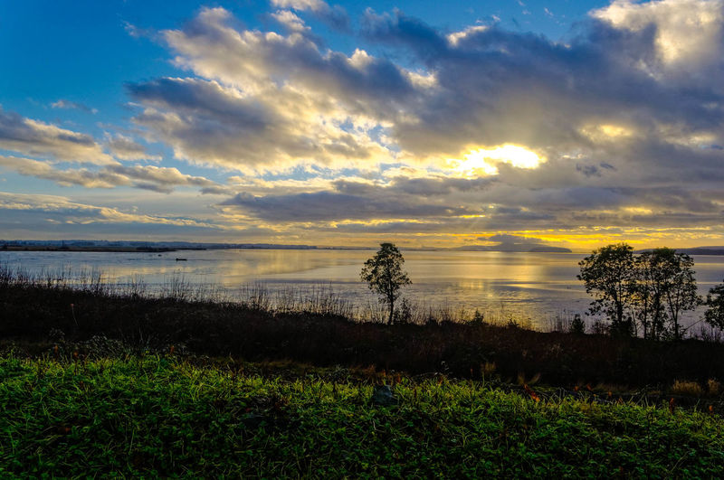 Chuckanut Washington State Beauty In Nature Cloud - Sky Day Grass Growth Horizon Over Water Idyllic Landscape Nature No People Outdoors Scenics Sea Sky Sunset Tranquil Scene Tranquility Tree Water