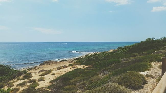 Puglia Litorale Paradiso
