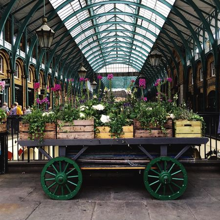Photo Walking Around Escaping Photography LONDON❤ Architecture London Walking Around Taking Photos Coventgarden Covent Garden  Plants