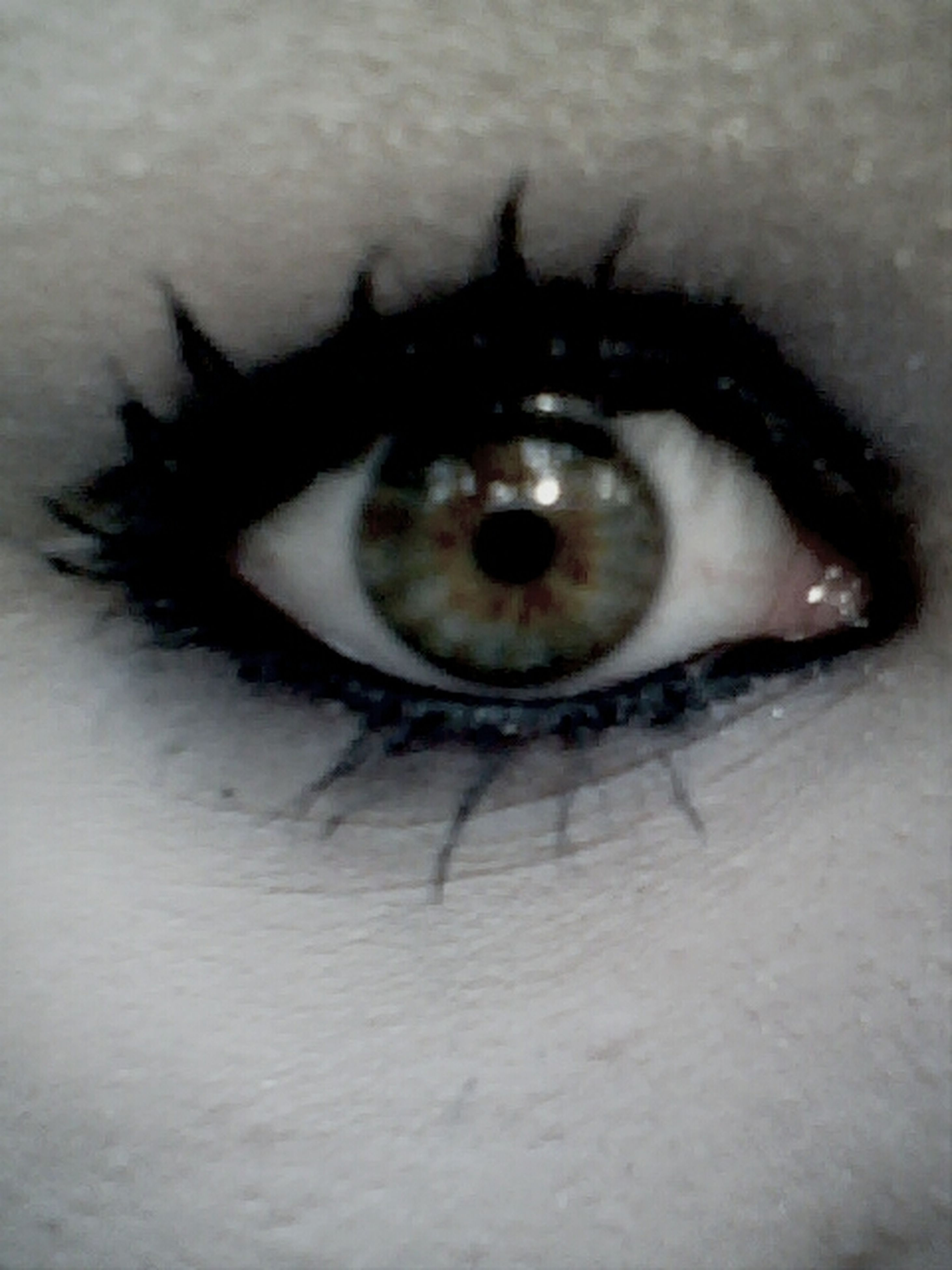 human eye, indoors, close-up, eyesight, eyelash, sensory perception, looking at camera, reflection, portrait, extreme close-up, eyeball, part of, iris - eye, unrecognizable person, high angle view, lifestyles, vision