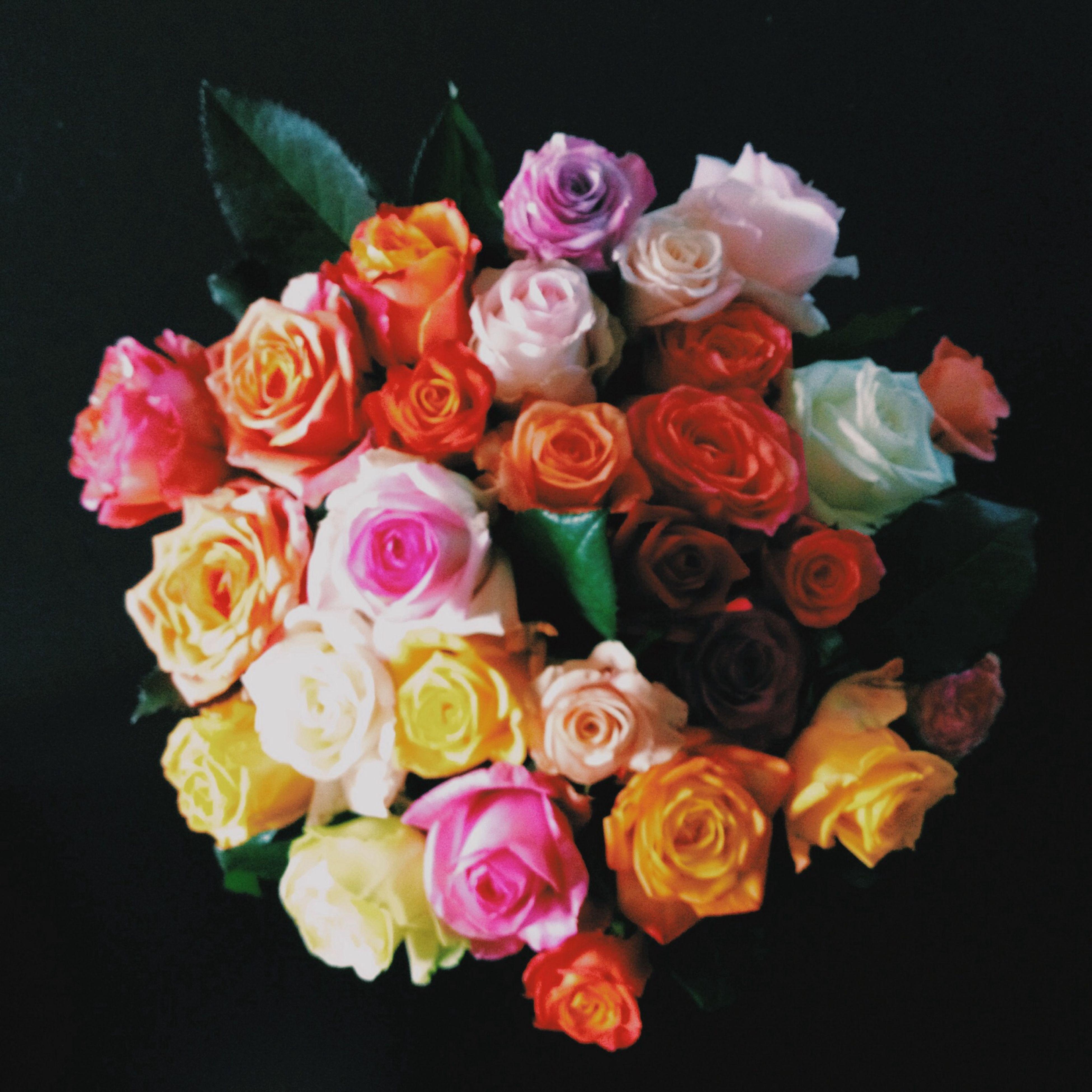 Some Flowers Home Decoration Roses - EyeEm - 웹