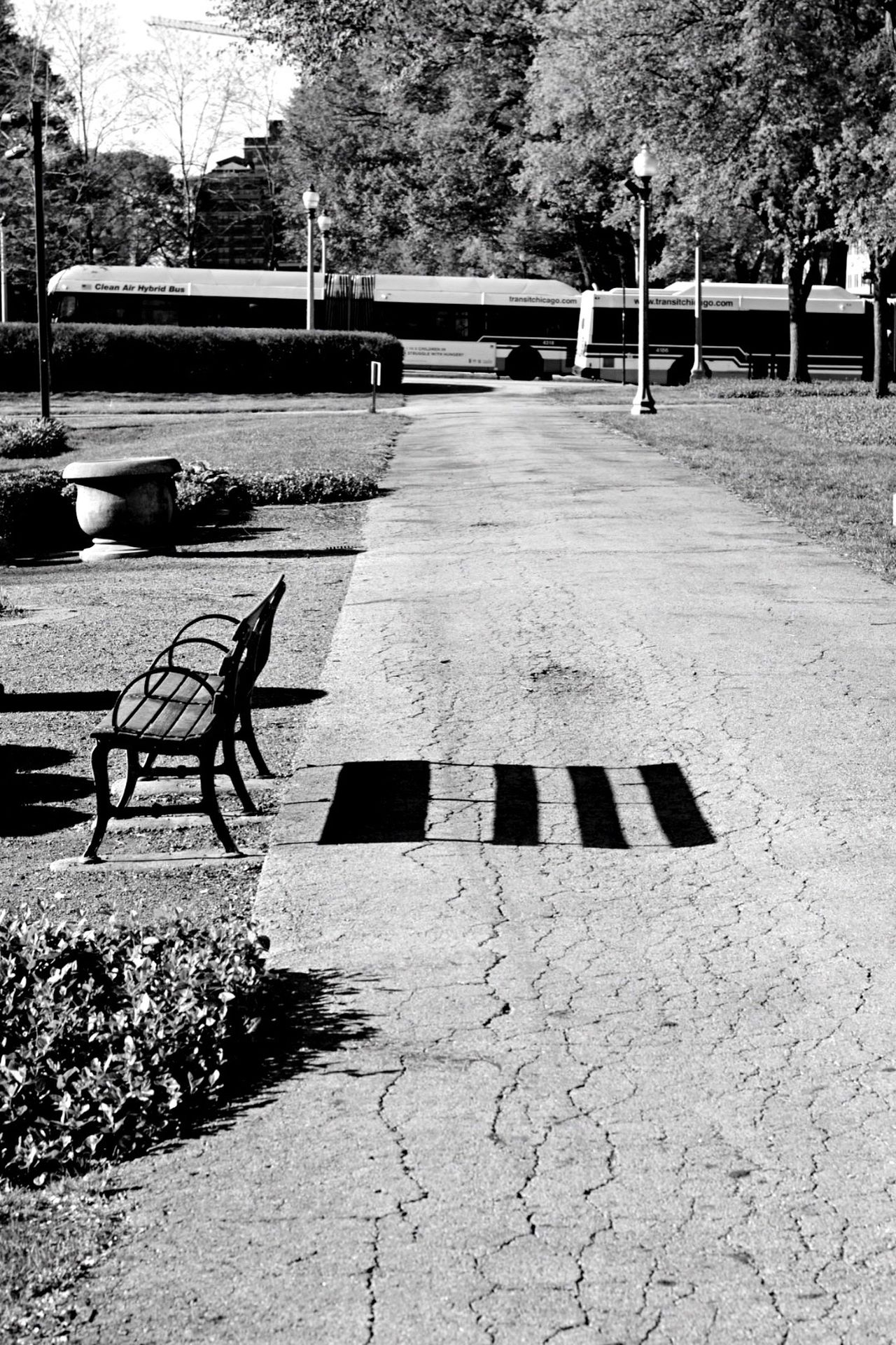Outdoors No People The Street Photographer - 2017 EyeEm Awards Chicago City Blackandwhite Bench Park Tranquility Neighborhood Map