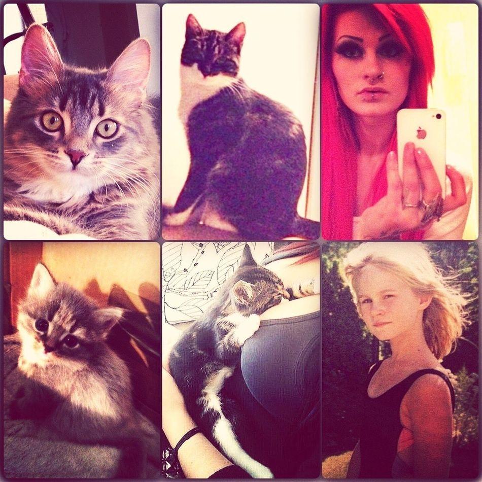 Me & My Kittys <3