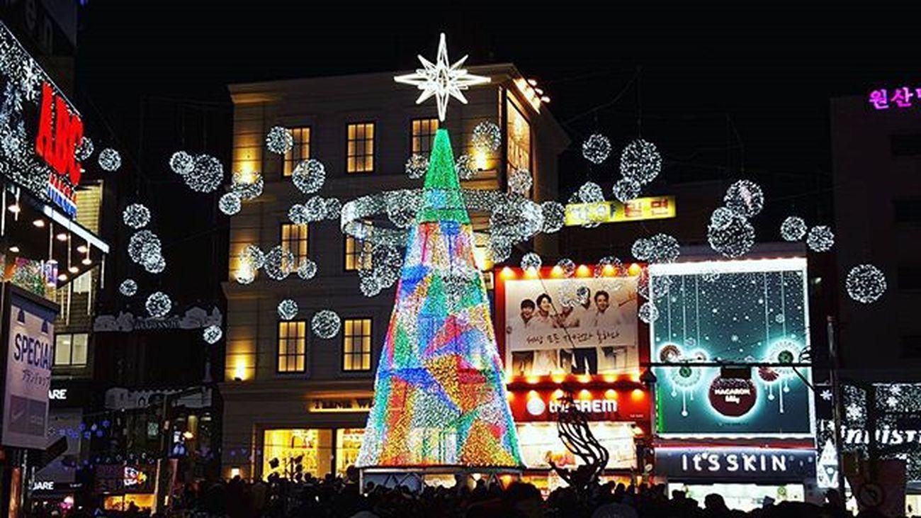 크리스마스 크리스마스트리 남포동 사람많음 또왔지만 또 새롭다 부산야경 부산 Busan 바다 일상 데일리 사진 여행 일상공유 맞팔 Sotong 미러리스카메라 Follow Followme Photo Travel Daily Southkorea